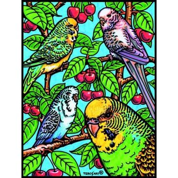 Coloriage en velours oiseaux
